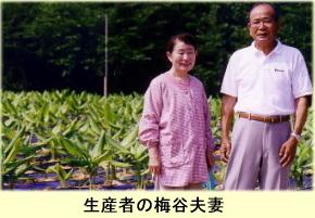 生産者の梅谷夫妻
